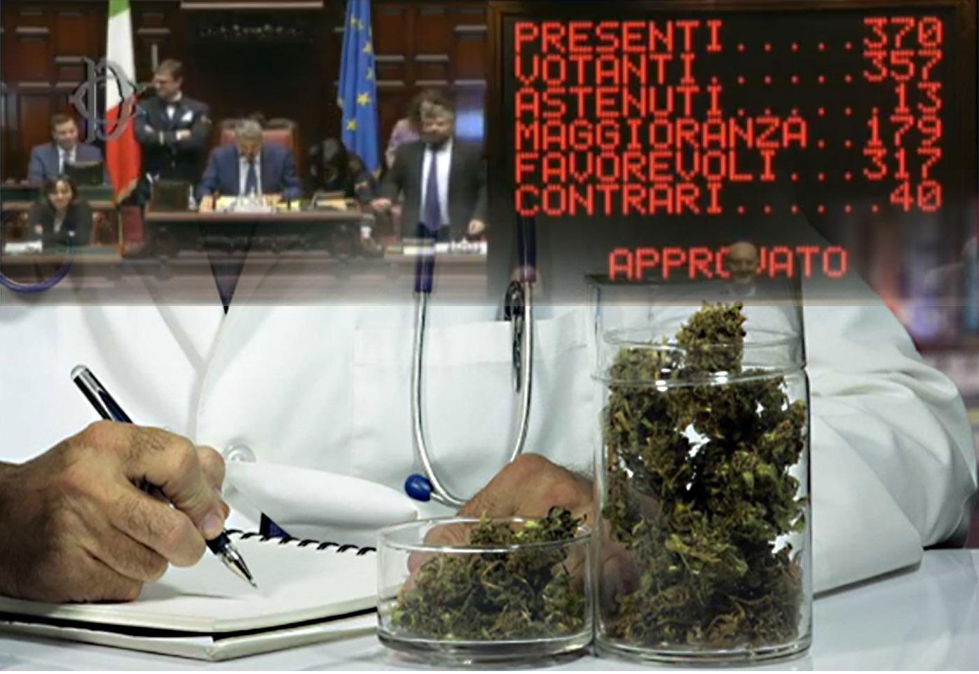 S della camera dei deputati alla cannabis terapeutica per for Oggi alla camera dei deputati