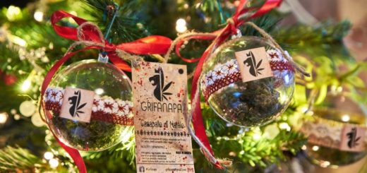 Grifanapa Perugia, canapalle Natale con fiore di canapa dentro