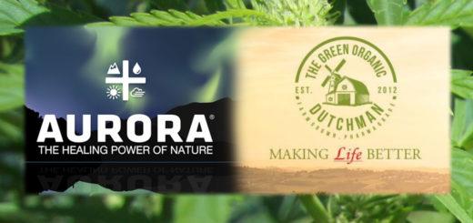Aurora Cannabis con The Green Organic Dutchman