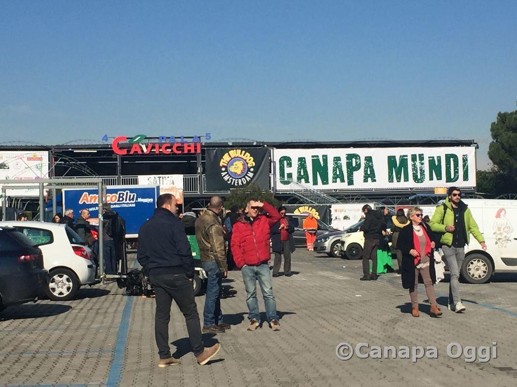Canapa-Mundi-2018-00001