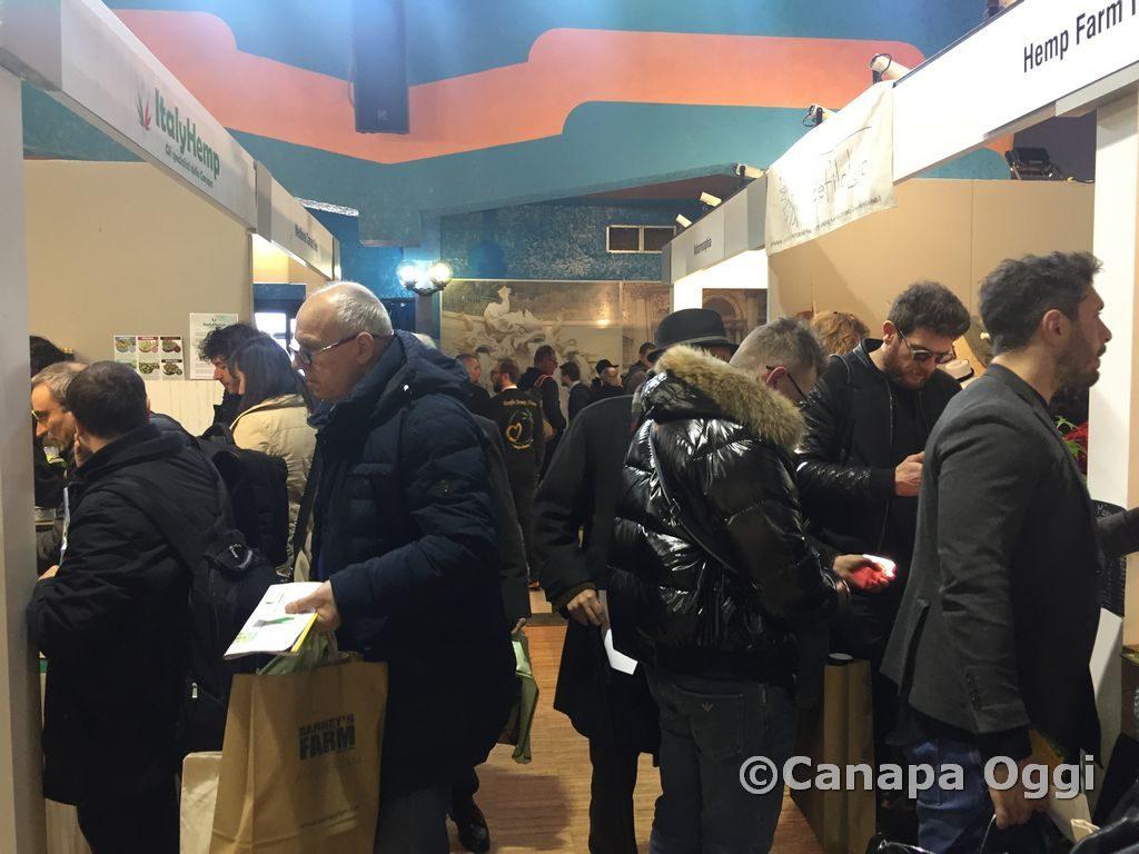 Canapa-Mundi-2018-00017