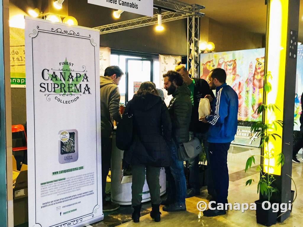 Canapa-Mundi-2018-00043