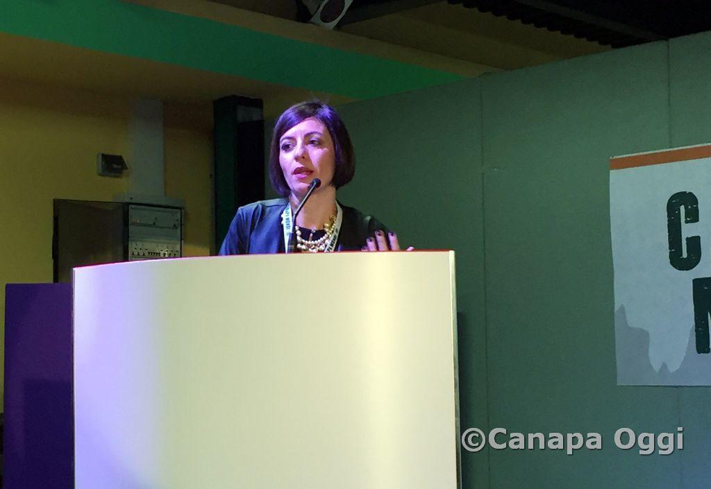 Canapa-Mundi-2018-00062