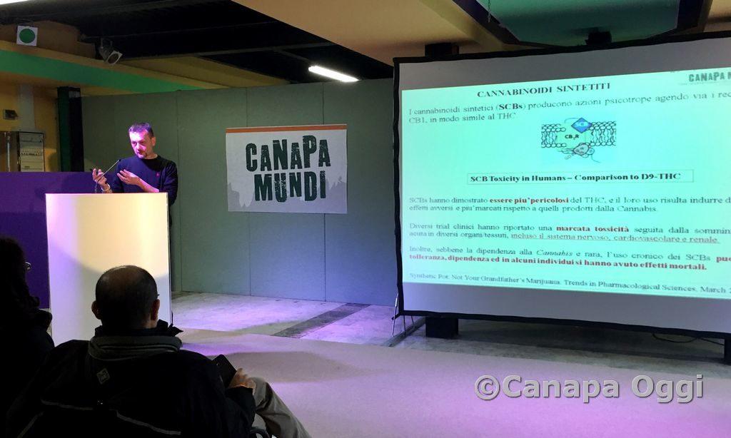 Canapa-Mundi-2018-00096