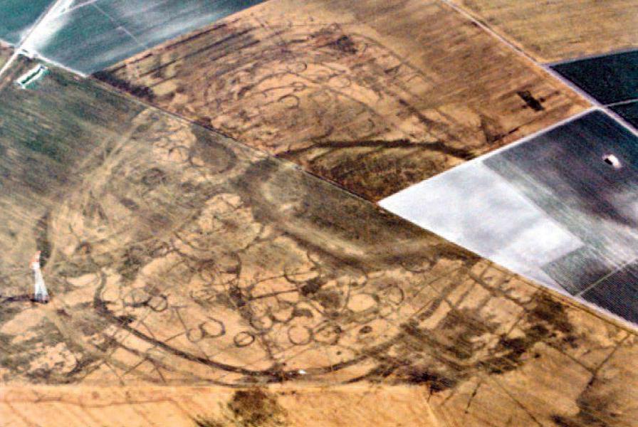 Campi Diomedei con un'area a copertura sistema gridshell in Canapa