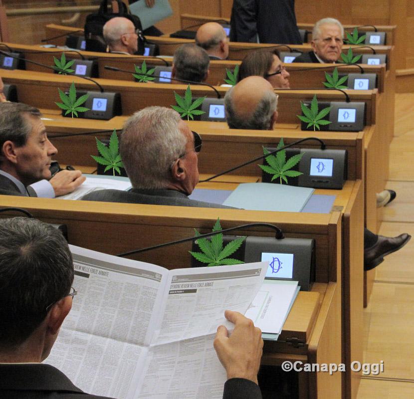 Nuova Camera dei Deputati, subito 376 progetti di legge più uno sulla Cannabis