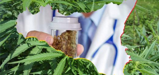 Chiarezza sulla Cannabis Terapeutica in Sicilia