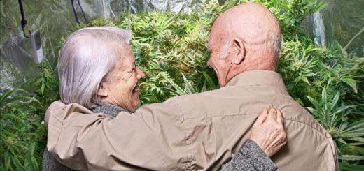 Israele, la Cannabis Terapeutica riduce in modo sicuro il dolore negli anziani