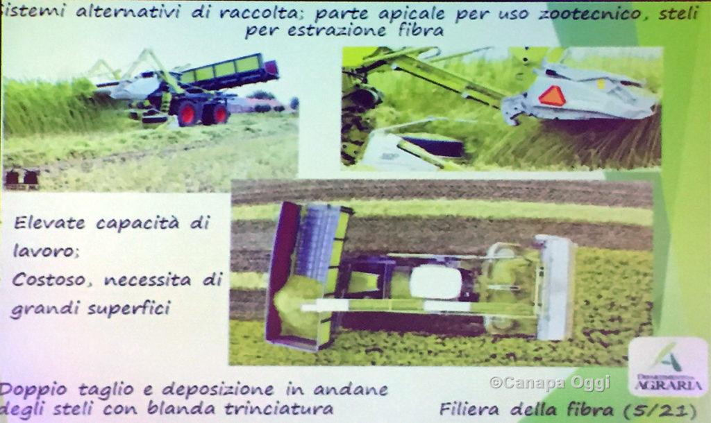 Meccanizzazione nella Canapa Industriale: raccolta paglie