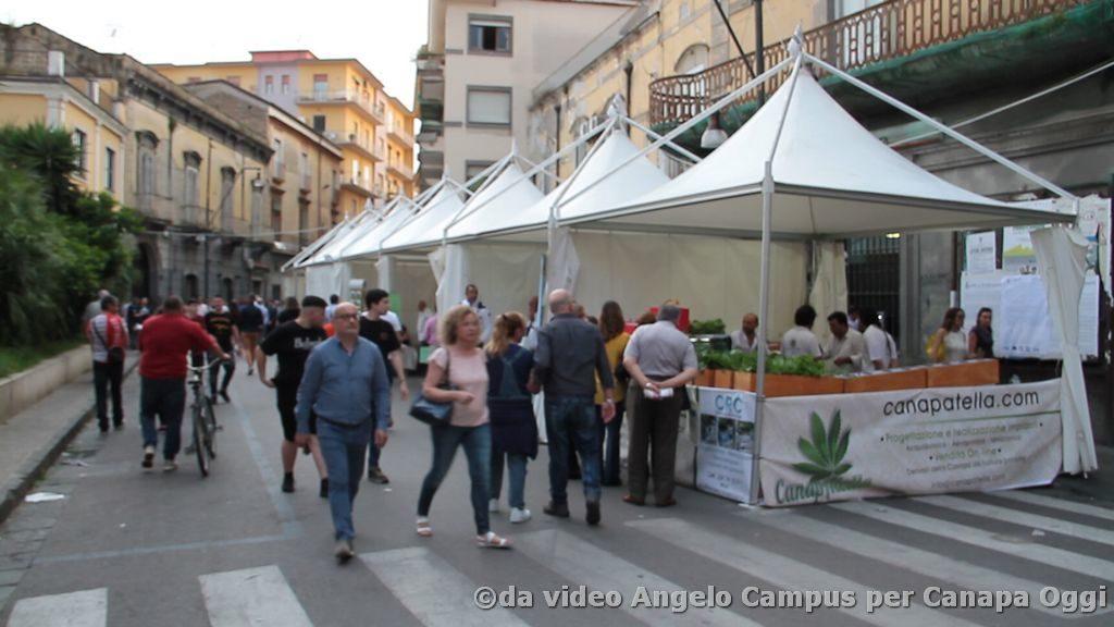Canapa-è-Frattamaggiore-2018-000612