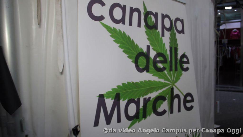 Canapa-è-Frattamaggiore-2018-000635