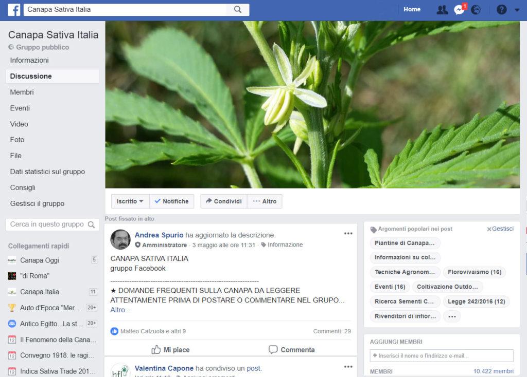proposte del gruppo Canapa Sativa Italia