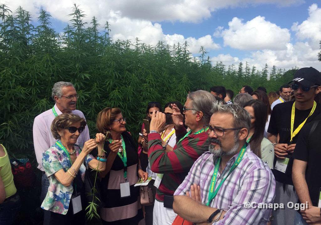 Canapa Campana, tanti visitatori e curiosi al Canapa Day 2018