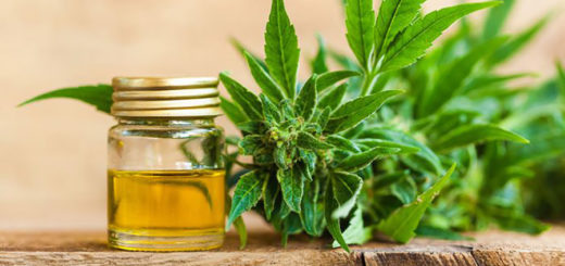 Cannabis Light-Legale nelle transazioni commerciali online