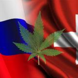 Canapa in Russia e in Svizzera