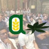Confagricoltura e Canapa convegno 25 luglio 2018