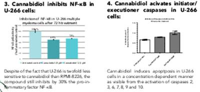 CBD Cannabidiolo con potente attività anti-mieloma