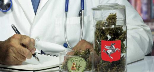 Bugliani e Sindacato Asacc sulla Cannabis terapeutica