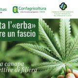 Lecce la tavola rotonda sulla Cannabis