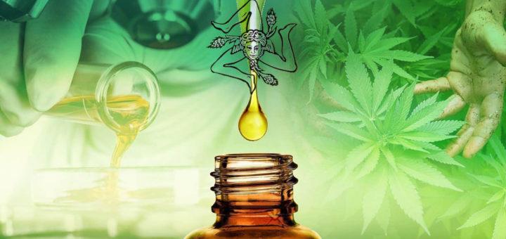 Sicilia il più grande impianto italiano per produrre derivati della cannabis