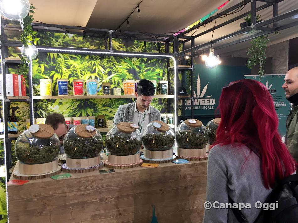 Canapa-Mundi-2019-Canapa-Oggi-022-128
