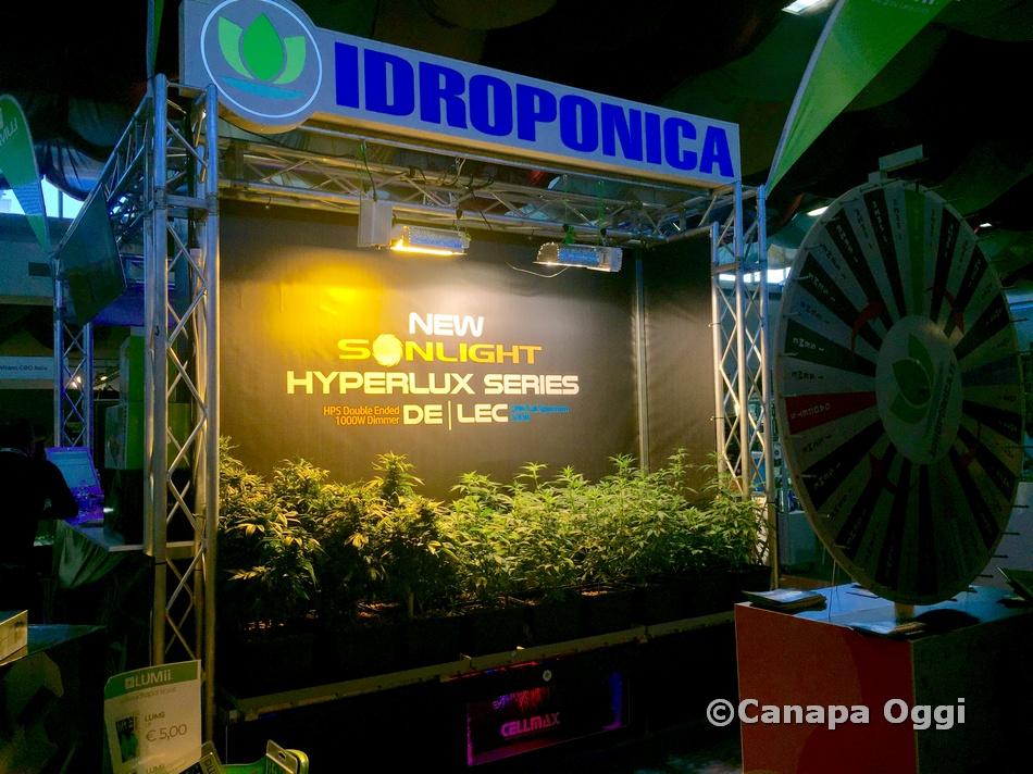Canapa-Mundi-2019-Canapa-Oggi-026-145