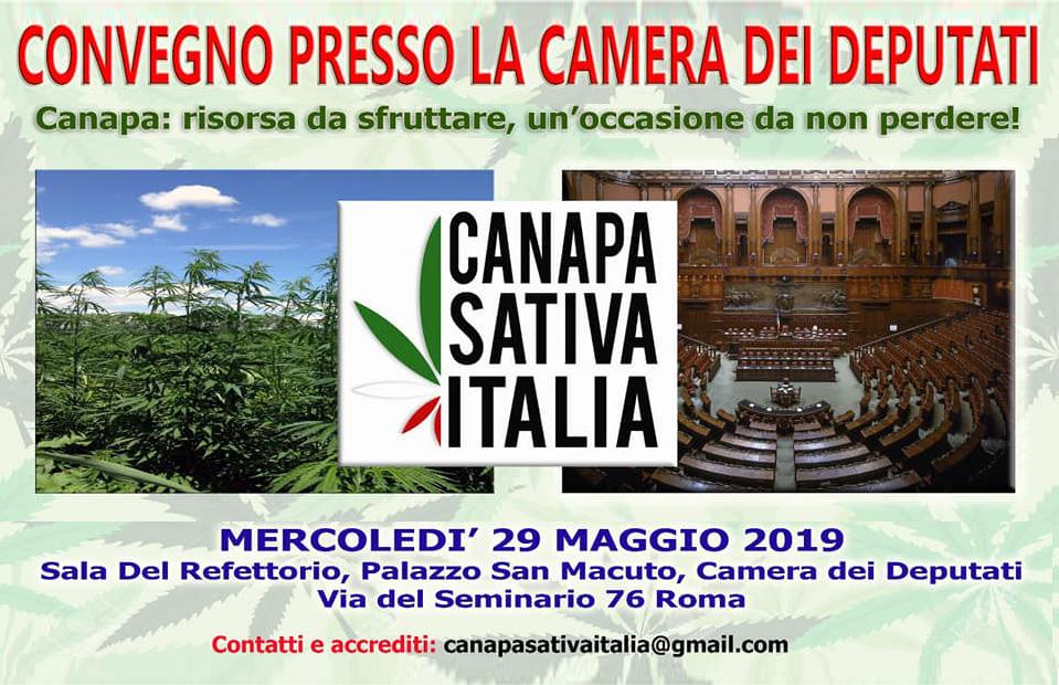 Canapa sativa italia convegno camera 29 maggio 2019 for Camera dei deputati italia