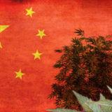Cina e Canapa industriale boom economico