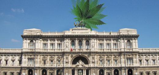 Cassazione vendere la Cannabis light è illegale