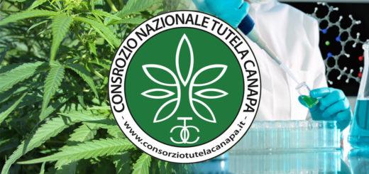 Consorzio Nazionale di Tutela della Canapa