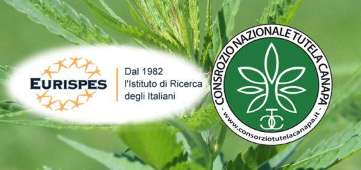 Eurispes e Consorzio Nazionale di Tutela della Canapa Italiana