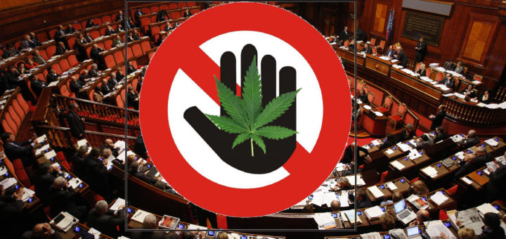 La manovra finanziaria va al Senato senza la Cannabis Light