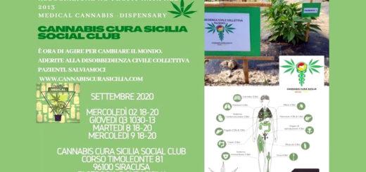 cannabis Cura Sicilia Social Club